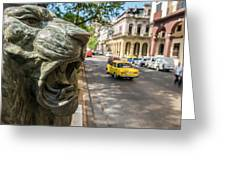 A Bronze Lion Guards Historic Buildings Greeting Card