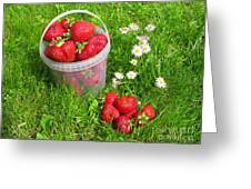 A Bucket Of Strawberries Greeting Card