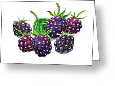 A Bunch Of Blackberries Greeting Card