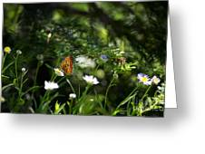 A Butterfly's World Greeting Card by Belinda Greb
