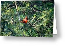 A Cardinal Rule Greeting Card