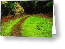 A Carpted Path Greeting Card