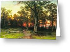 A Child Walks In A Forest Greeting Card