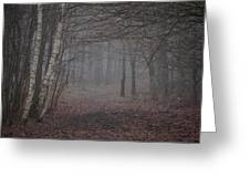 A Chill In The Trees Greeting Card