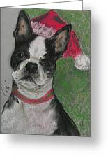 A Christmas Terrier Greeting Card