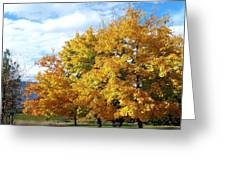 A Chromatic Fall Day Greeting Card