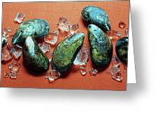 A Cluster Of Mussels Greeting Card