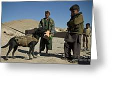 A Coalition Forces Military Working Dog Greeting Card