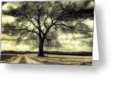 A Cold Wind Blows  Greeting Card