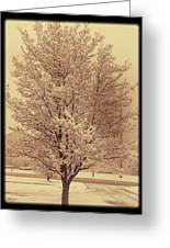 A Cold Winters Day Greeting Card