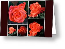 A Collage Of Pink Greeting Card
