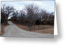 A Country Driveway Near The Brazos River Greeting Card