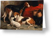 A Couple Of Foxhounds With A Terrier The Property Of Lord Henry Bentinck Greeting Card
