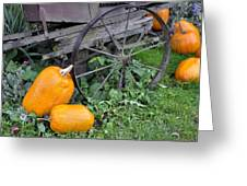 A Crop Of Pumpkins Greeting Card