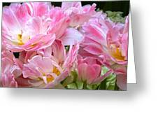 A Crowd Of Tulips Greeting Card