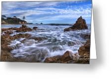 Low Tide In Corona Del Mar Greeting Card