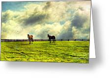 A Day In Kentucky Greeting Card by Darren Fisher
