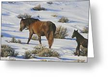 A Day In The Life Of  A Wild Horse  Greeting Card by Jeanne  Bencich-Nations