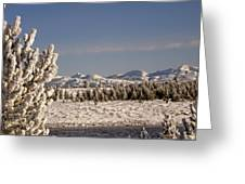 A Day Of Winter Greeting Card