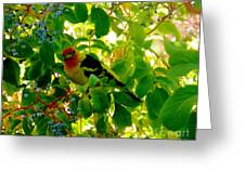 A Day With Mr. Tanager 8 Greeting Card