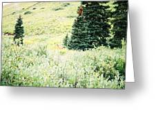 A Deer Hiding In The Tundra Greeting Card