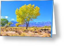 A Desert Autumn Greeting Card