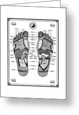 A Diagram Of Parts Of The Foot Greeting Card
