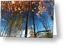 A Different Side Of Autumn Greeting Card