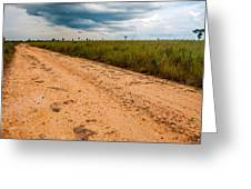 A Dirt Road In The Plains Greeting Card