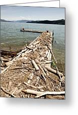 A Dock Covered With Driftwood Greeting Card