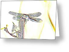 A Dragonfly In My Dreams Greeting Card