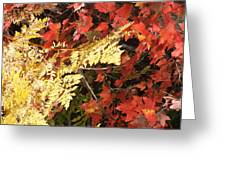 A Fall Day In New Hampshire Greeting Card