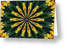 A Fanfare Of Flowers Greeting Card