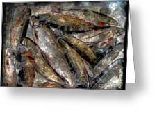 A Fine Catch Of Trout - Steel Engraving Greeting Card