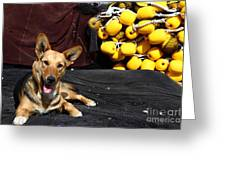 A Fishermans Best Friend Greeting Card by James Brunker