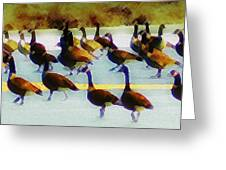 A Flock Of Geese Greeting Card