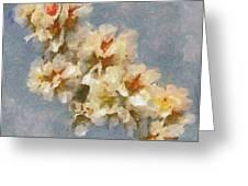 A Flourishing Cherry Branch Greeting Card