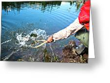 A Fly Fisherman Pulls A Fish Greeting Card