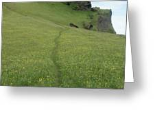 A Footpath Above The Cliff Greeting Card