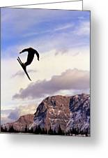A Freestyle Skier Takes A Jump In Utah Greeting Card