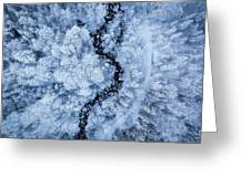 A Freezing Cold Beauty Greeting Card