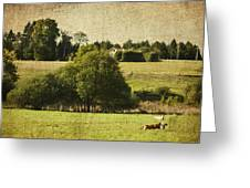 A French Country Scene Greeting Card by Georgia Fowler