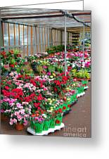 A French Flower Market Greeting Card