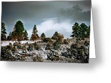 A Fresh Covering Of Snow Greeting Card