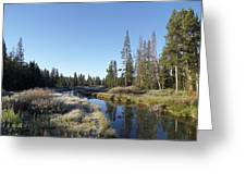 A Frosty Morning Along Obsidian Creek Greeting Card