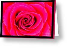 A Fuschia Pink Rose Greeting Card