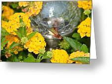 A Gardens Beauty Greeting Card