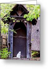 A Ghost In The Potting Shed Greeting Card