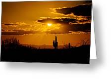 A Golden Southwest Sunset  Greeting Card