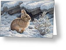 A Good Place - Bunny Greeting Card